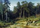 Мачтовый лес в Вятской губернии