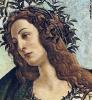 Афина Паллада  1482