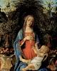 Мадонна Барди  1484-1485
