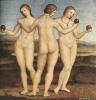 Три грации  1504